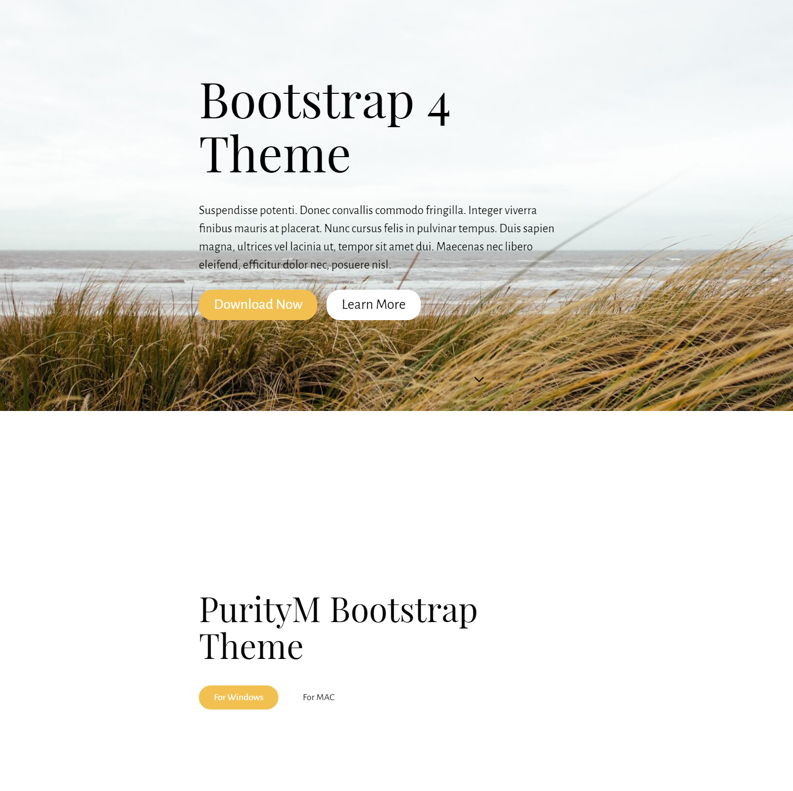 HTML5 Bootstrap 4 Themes