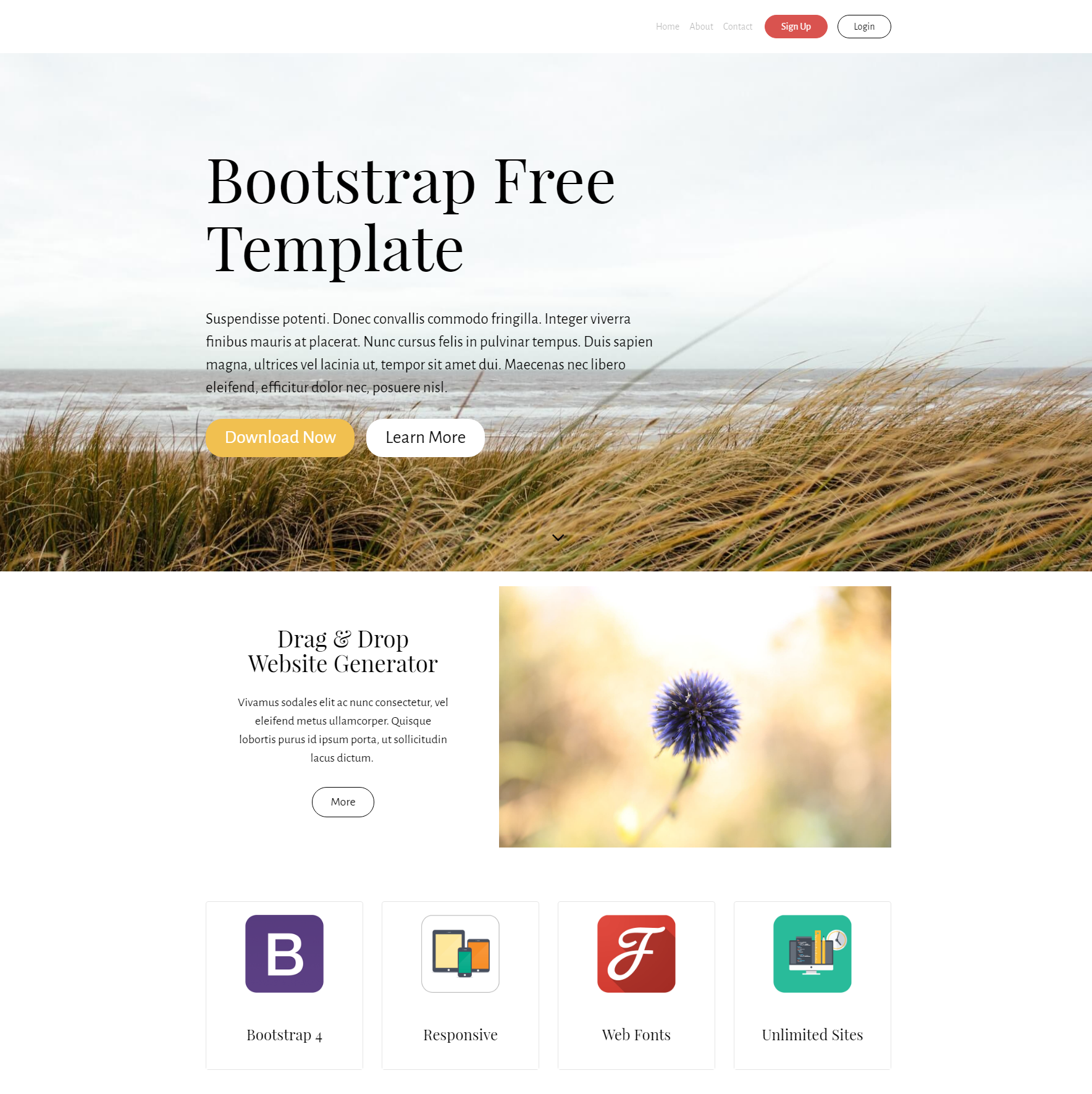 Responsive Bootstrap Free Themes