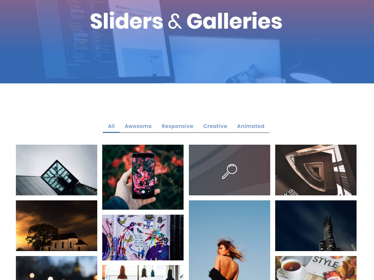Slider and Gallery