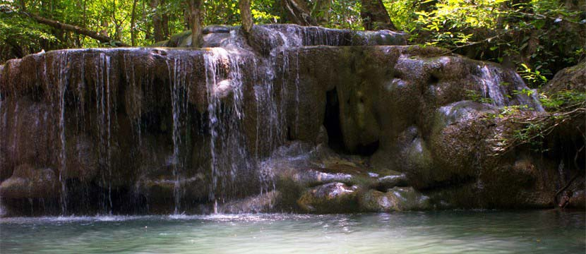 Cascade in the jungle